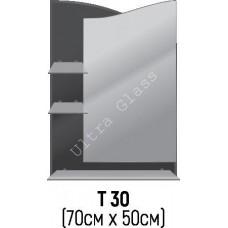 Зеркало Т-30 70х50см с тонированной подложкой