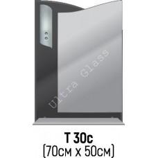 Зеркало Т-30с 70х50см с тонированной подложкой